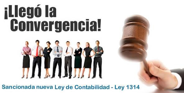 La Revisoría fiscal no sólo se regiría por las normas de aseguramiento de la Información de la Ley 1314