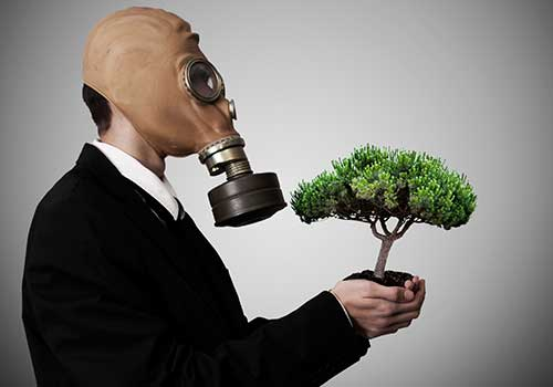 Formulario 435 del impuesto nacional al carbono acaba de ser prescrito