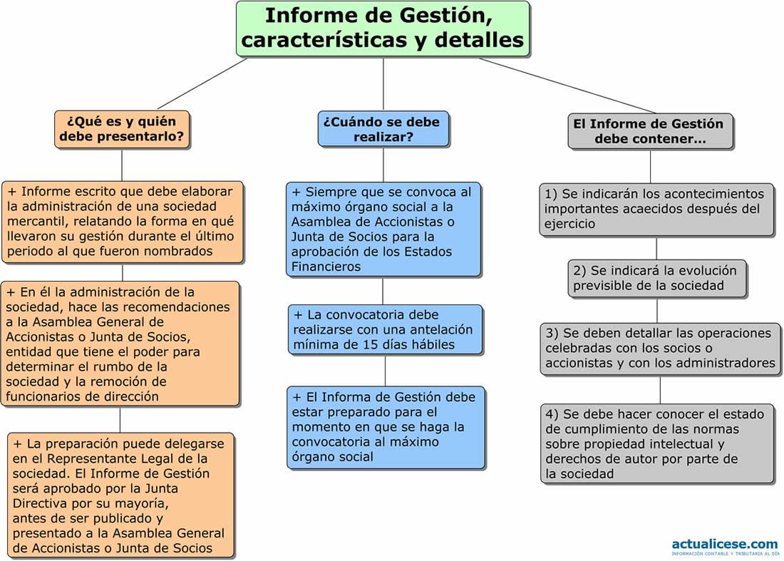 Infografía] Informe de Gestión, características y detalles